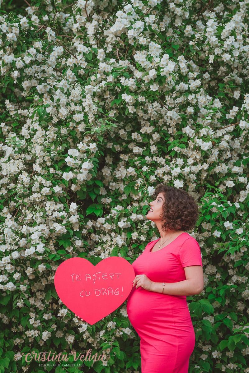 Sesiune foto gravide – Andra